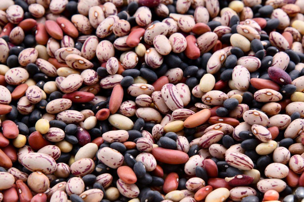lentejas y judias dieta macrobiotica