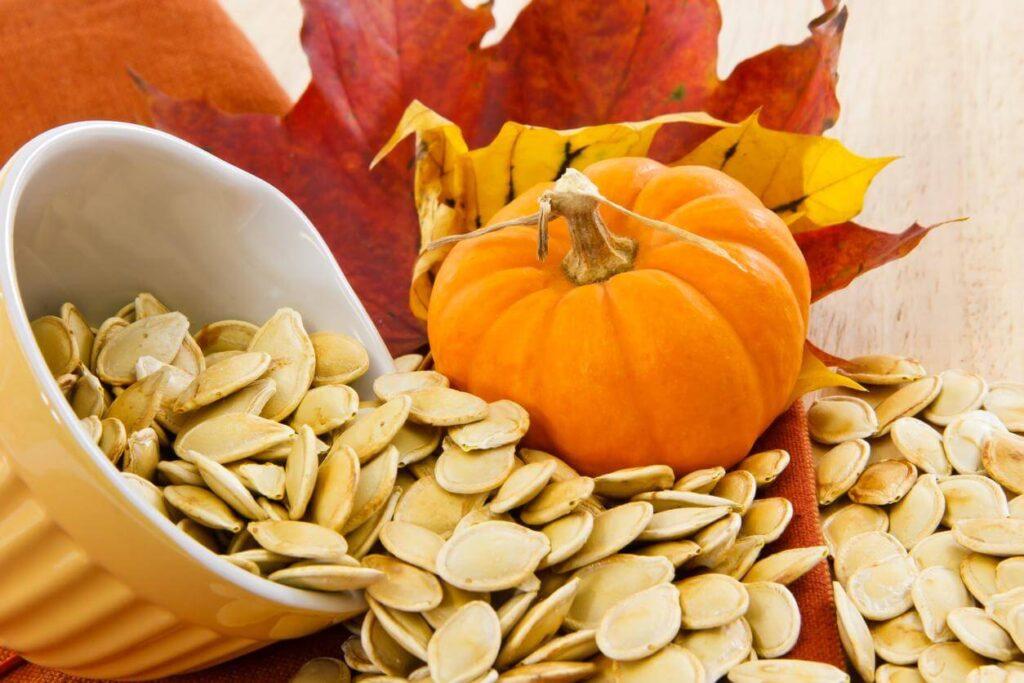 calabaza i semillas