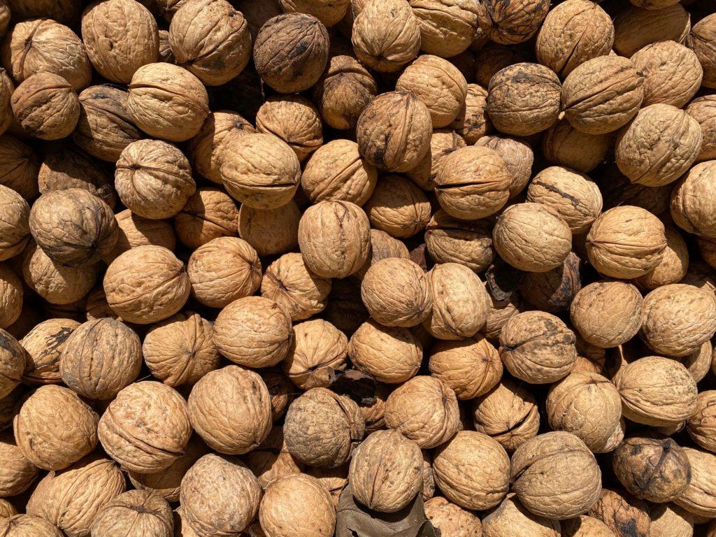 nuez walnut