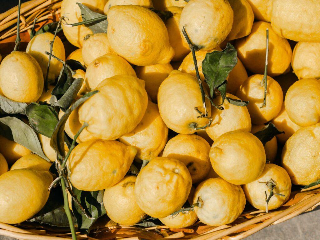 limones recien cogidos