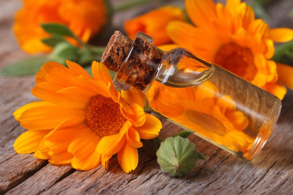 aceite de calendula flor