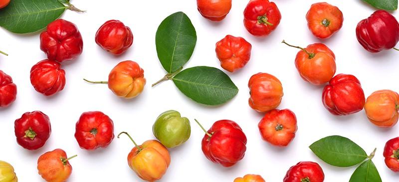 acerola-fruta